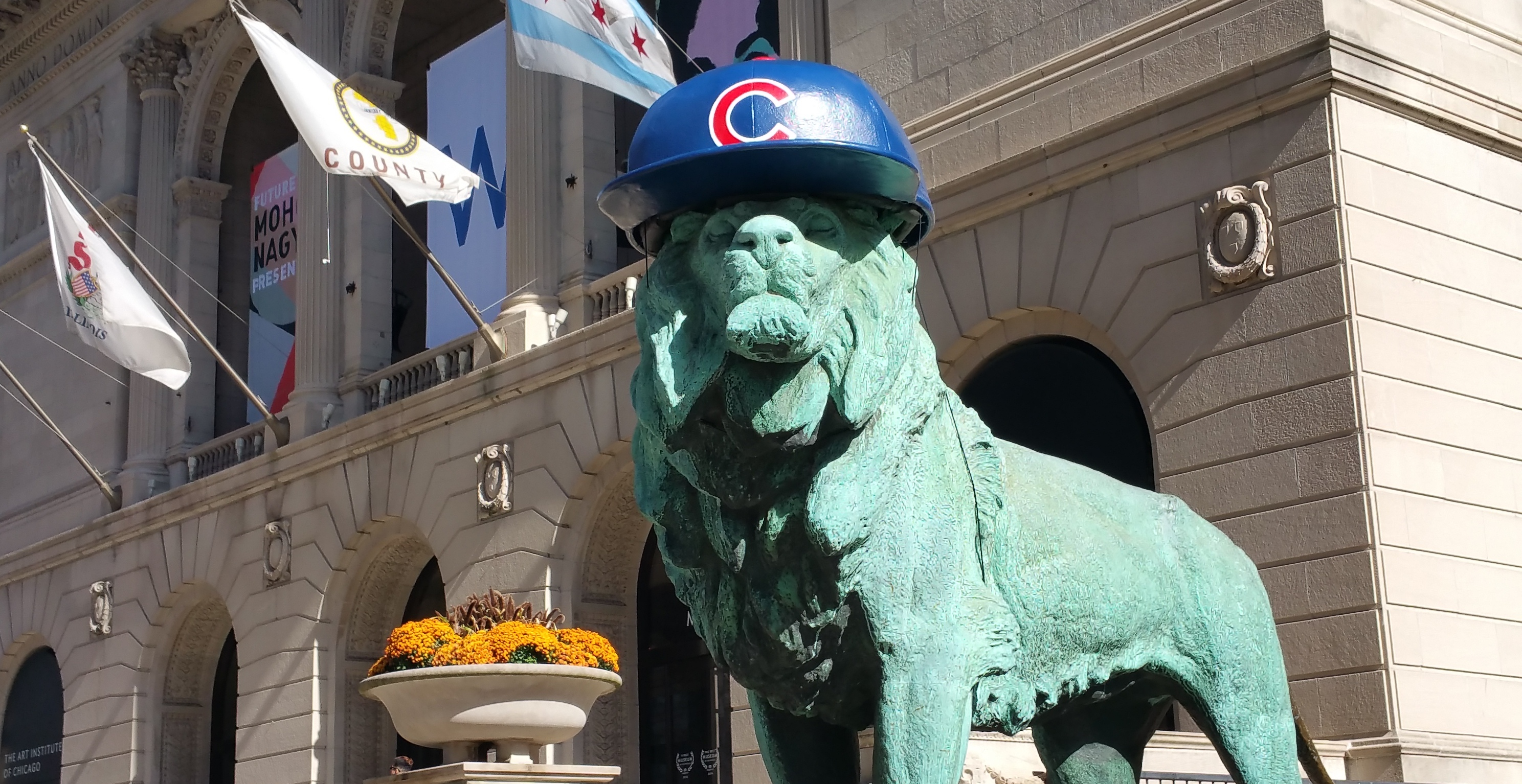 cubs-lion-art-institute